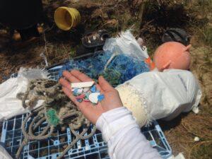 marine debris and micro plastics covered the beach.